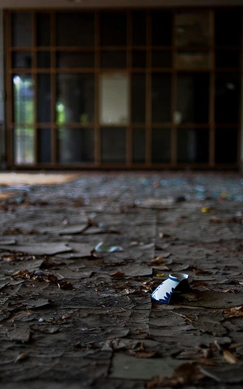 Tokyo Times—Sanyo Flooring