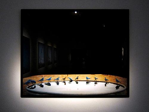 Biennale Illuminazioni Venice 2011 Arsenale Jean Luc Mylayne