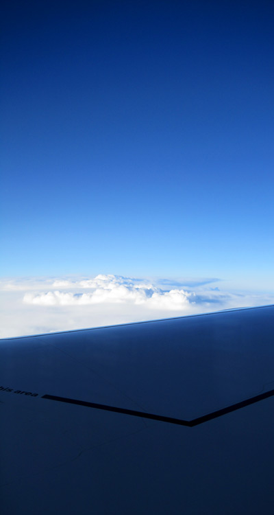 Airbus A380-800 Wing