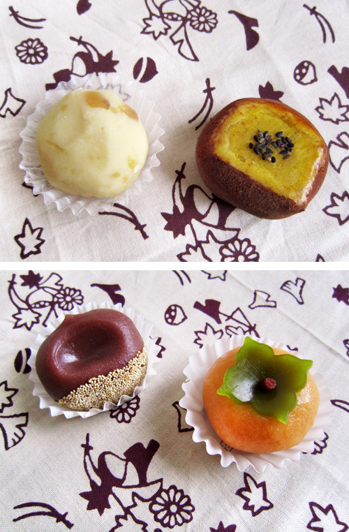 Japanese Autumn Wagashi