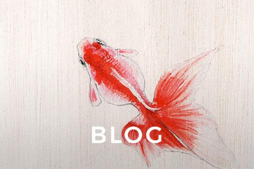 Kingyo / Goldfish Drawing by Wanda Proft