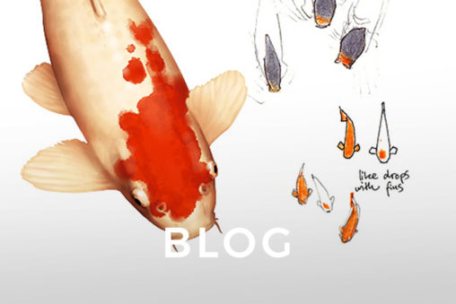 Koi Digital Drawing and Sketches by Wanda Proft